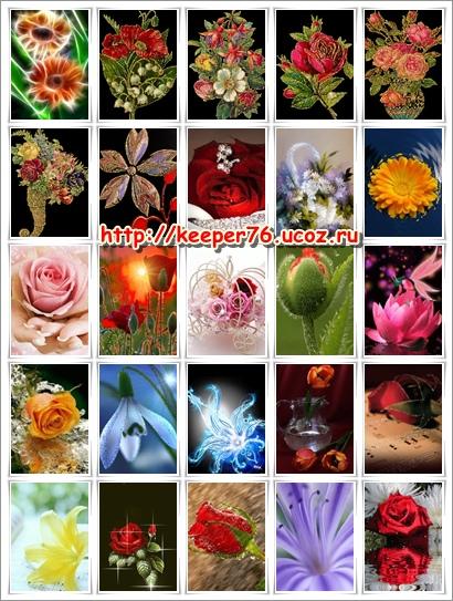 Картинки на телефон с цветами скачать бесплатно